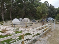 More of our camp ground.