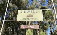 Gilwell sign